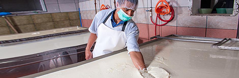 Lebensmittel verarbeitende Betriebe